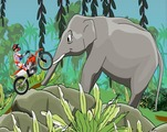 Trial-set-in-the-jungle-with-elephants-and-statute